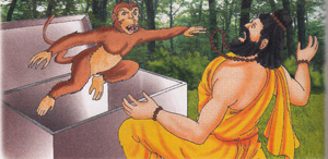 sadhu open the box and a monkey jumped on him and bite